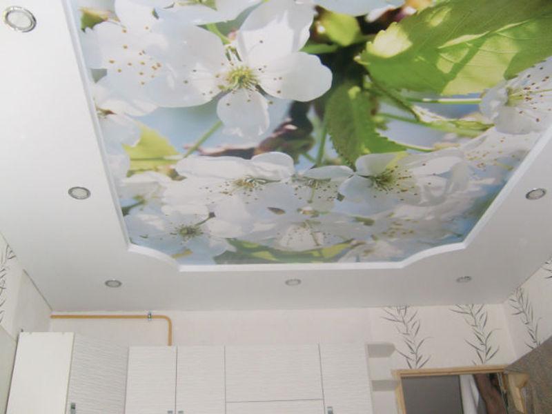 Подобрать цвет краски потолка