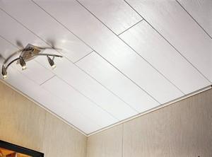 Потолок из панелей ПВХ матовый